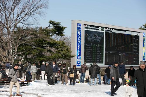 20140217 さらに雪の東京競馬場 / More Snowy Tokyo R.C.
