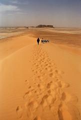 Déserts (Hoggar, Tassili, Namib)