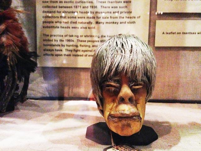 shrunken skull