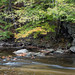 Pennypack Creek Early Fall by Jim.Collins