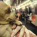 Mrs. Fannie takes the train by AnomalousNYC