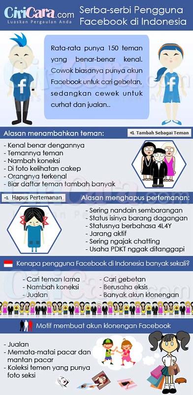 Serba Serbi Pengguna FB di Indonesia