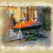 chariot  des oranges