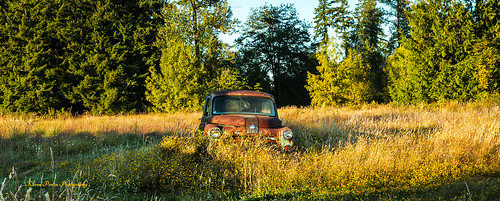 field toledo abandonedvehicle