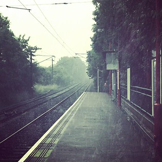 Image 206 - Miserable morning