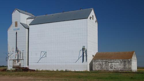 canada rural elevator grain alberta prairies grainelevator westerncanada killam ruralalberta canadianprairies