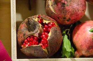 Second Place Pomegranate