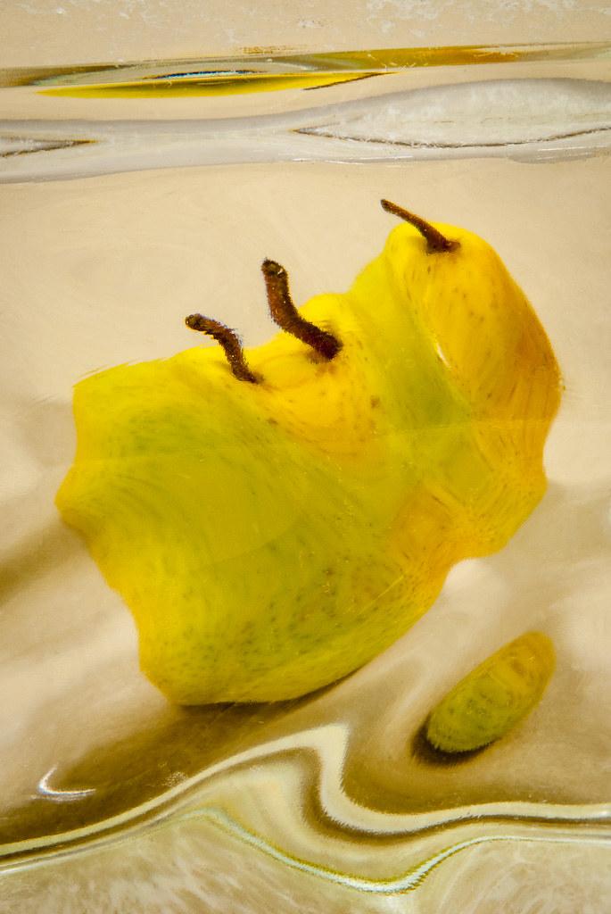 20130813_block_pear