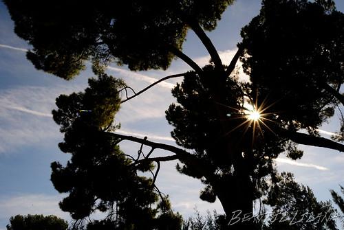 Sol estrellado by Beatriz - Don't stop travelling