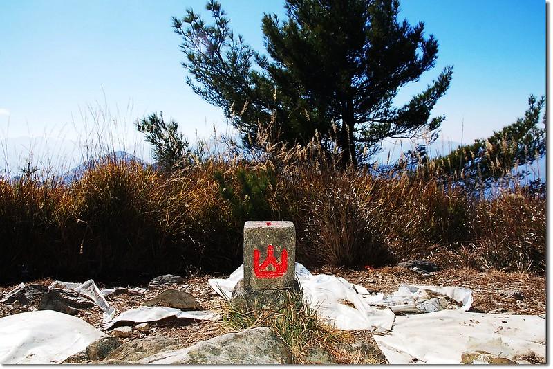 西巒大山森林三角點(Elev. 3081 m) 2