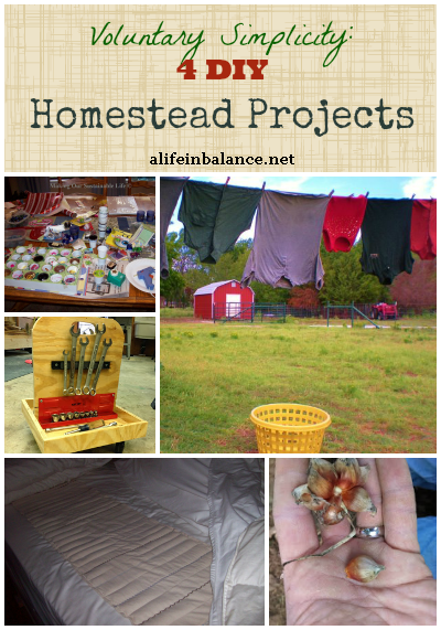 4 DIY Homestead Projects