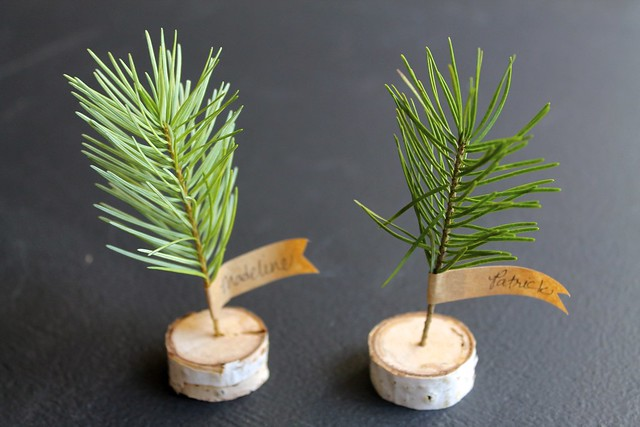 DIY Project: Birch Branch mini tree place cards