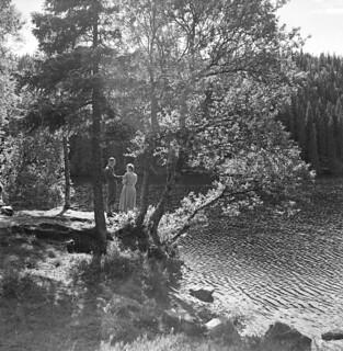 Møte ved et tjern (1951)