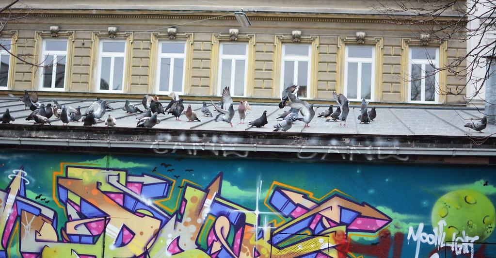 Yppenplatz_11