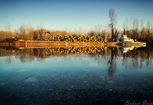 trees winter reflection water river boat serbia zima danube brod voda rijeka vojvodina srbija dunav kovin drva dunavac bukvicivan