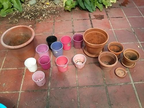 Bower pots