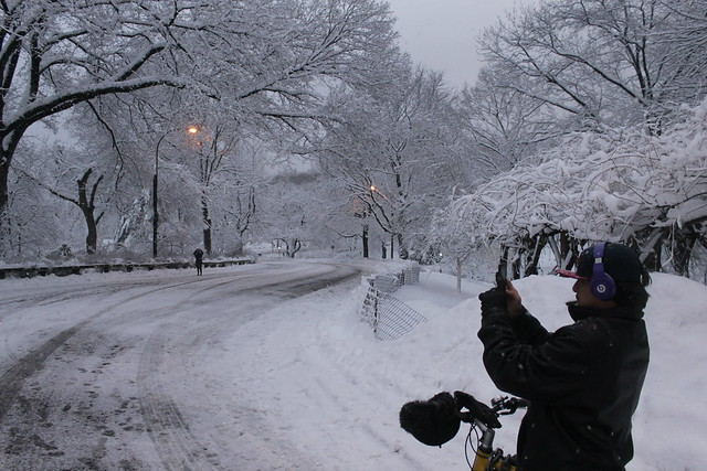 Snapshot of a Wintery Snapshot | Central Park