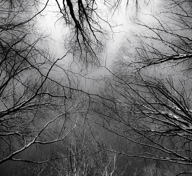 Taller de Fotografia de Paisatge