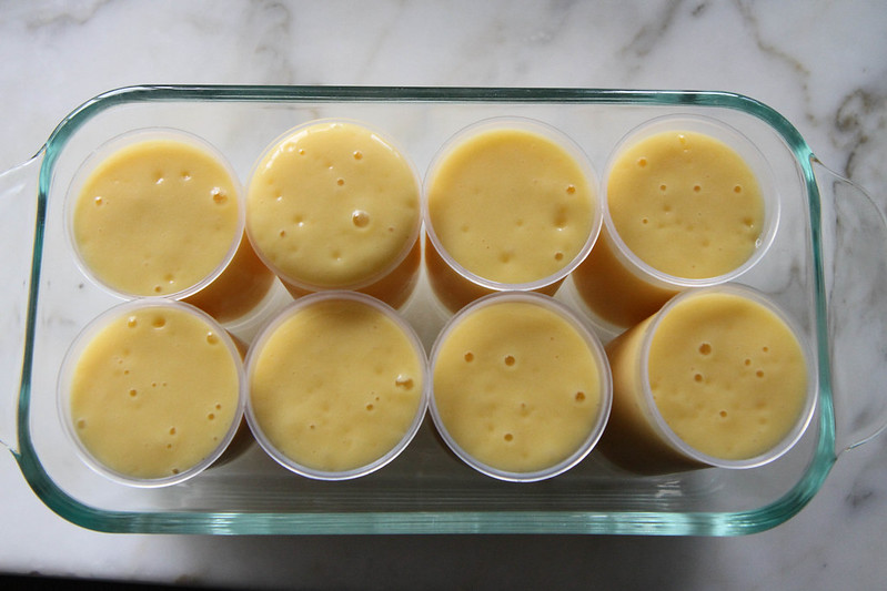 Mango Vanilla Honey Smoothie Push-up Pops
