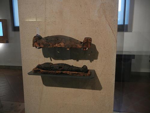 DSCN0721 _ Museo Civico Eremitani, Padova, 12 October