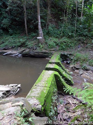 Concrete dam that traps the soil and other debris from the basin at the waterfalls.