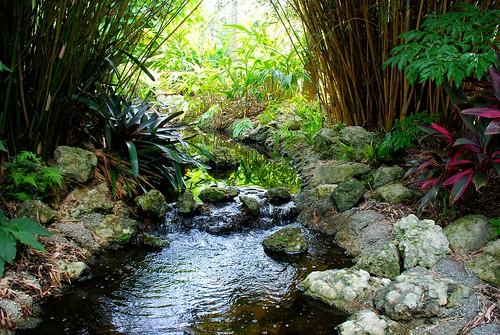 garden botanical florida serene largo clearwater ridgecrest gumm gumm238