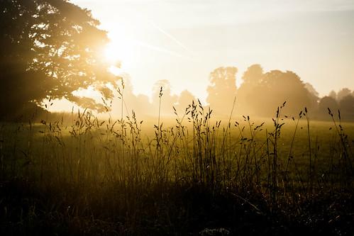 English dawn
