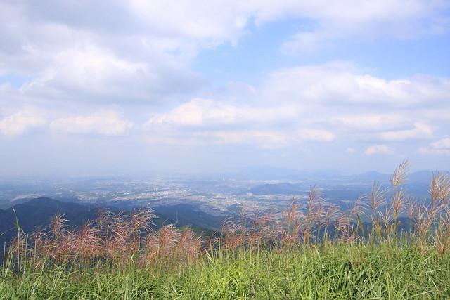 20130910岩湧山0045
