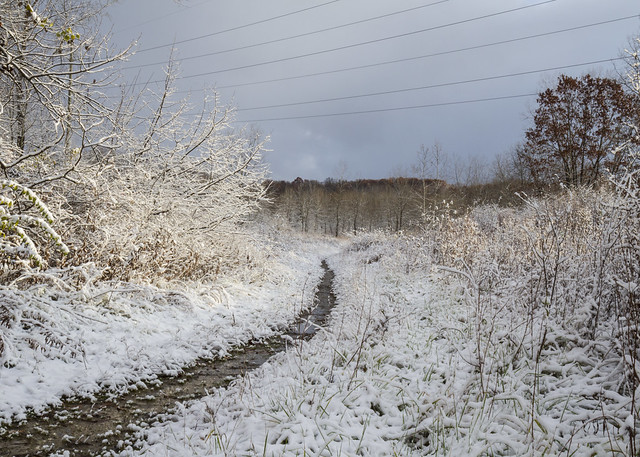 Snow Trail 4