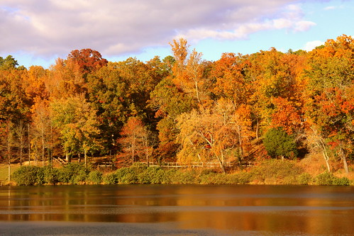statepark autumn fallleaves lake fall tn tennessee lakeplacid chestercounty chickasawstatepark bmok bmok2