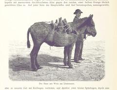 Image taken from page 394 of 'Die Balearen. Geschildert in Wort und Bild. [By Louis Salvator, Archduke of Austria. Abridged edition.]'