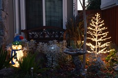 Klaus Naujok posted a photo:	Our Christmas outdoor lights. Getting older, I was not allowed to use the ladder this year. However, sofar I am the only house on my block with lights.
