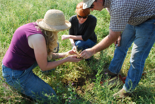 Anna Jones-Crabtree and Doug Crabtree discuss soil health with NRCS Soil Conservationist Amy Kaiser. NRCS photo.