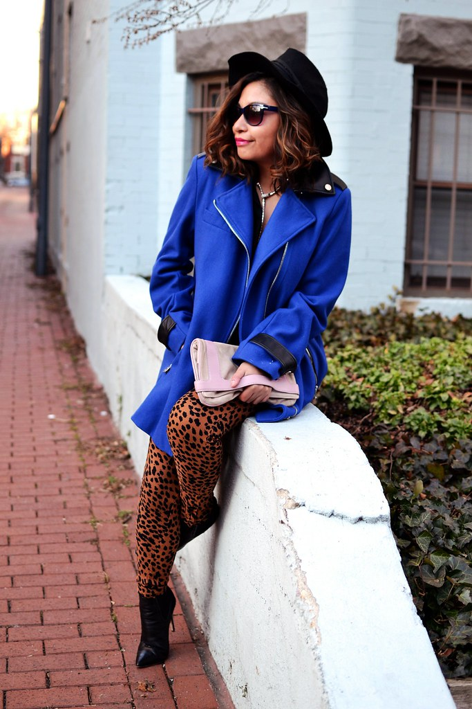 Spicy Candy DC. Cobalt blue coat, leopard print  trousers 081