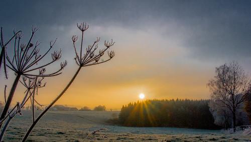 Frosty sunrise / Eiskalter Morgen