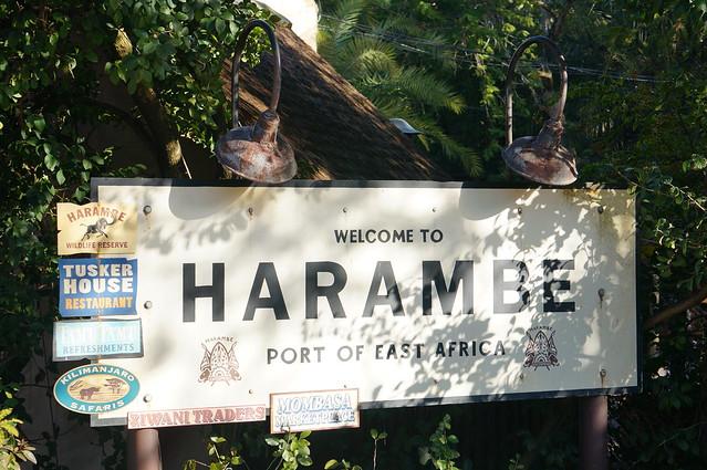 Header of harambe