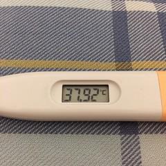 37℃台。汗が出てからは早かった。