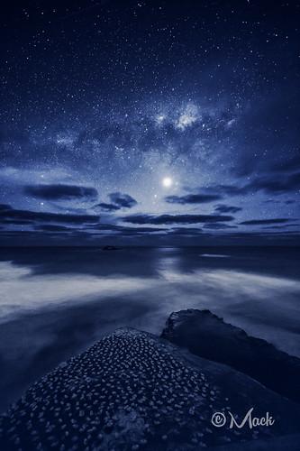 newzealand auckland muriwai