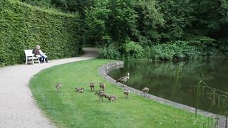 Schwetzinger Schlossgarten (Mai 2014)
