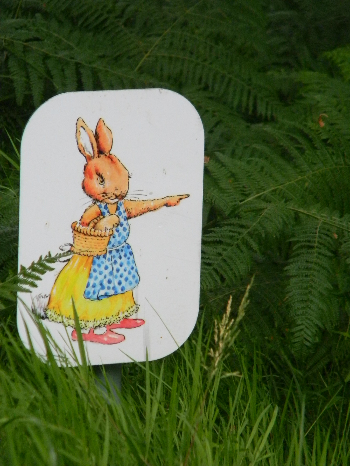 Which way Mrs Rabbit? Horsted Keynes to Forest Row