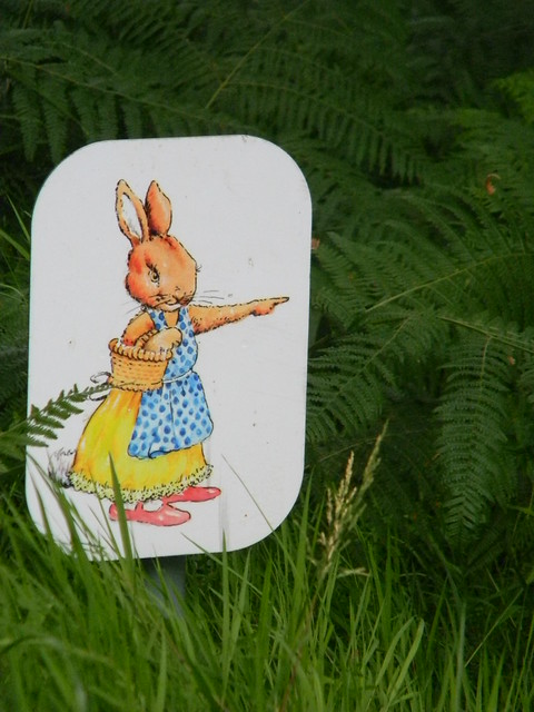 Which way Mrs Rabbit?