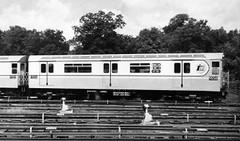 NYCT IRT R36 9558, September 1963 New York City Transit Authority press photo
