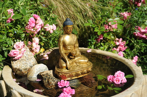 Brass statue of Lord Buddha in the earth touching mudra, holding begging bowl, water fountain, lotus petals, rocks, pink carpet roses, Tibetan Buddhist style, (gift from HH Dagchen Sakya), A Garden for the Buddha, Seattle, Washington, USA by Wonderlane