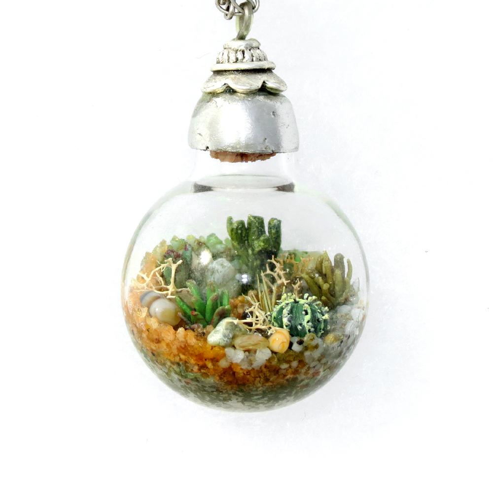 Succulent Terrarium by Hieropice