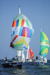 Poland, Gdynia Sailing Days