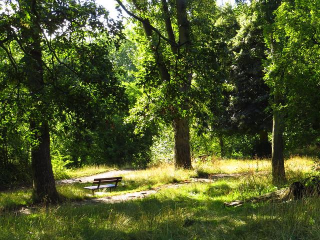 At Hampstead Nr 2 Pond