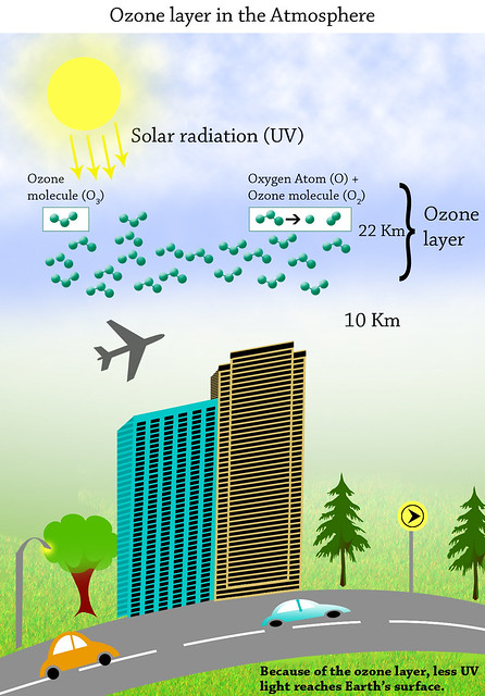 Ozone layer definition/meaning