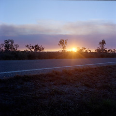 Sun setting through bushfires