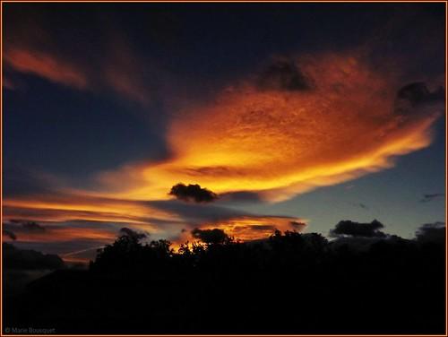 orange nature soleil fuji bleu ciel nuage soir crépuscule roussillon arbre couleur couchant coucherdesoleil forme fujifinepix catalogne pyrénéesorientales imaginaire soleilcouchant suddelafrance thuir weatherphotography fabuleuse bleumarie mariebousquet photomariebousquet photodemariebousquet