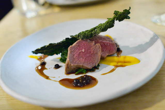 grilled venison, pumpkin, kale, black mole, huckleberry jus